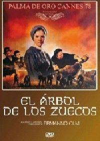 ARBOL DE LOS ZUECOS