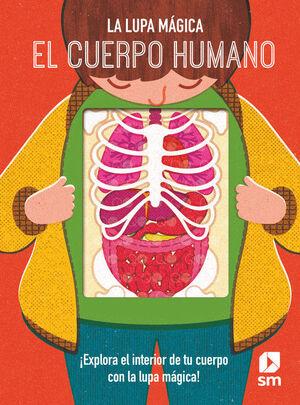 LLM.EL CUERPO HUMANO