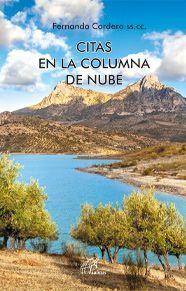 CITAS EN LA COLUMNA DE NUBE