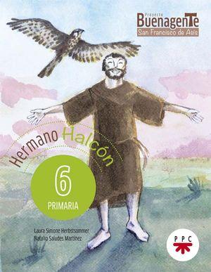 6EP.HERMANO HALCON 17