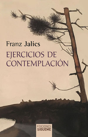 EJERCICIOS DE CONTEMPLACIÓN